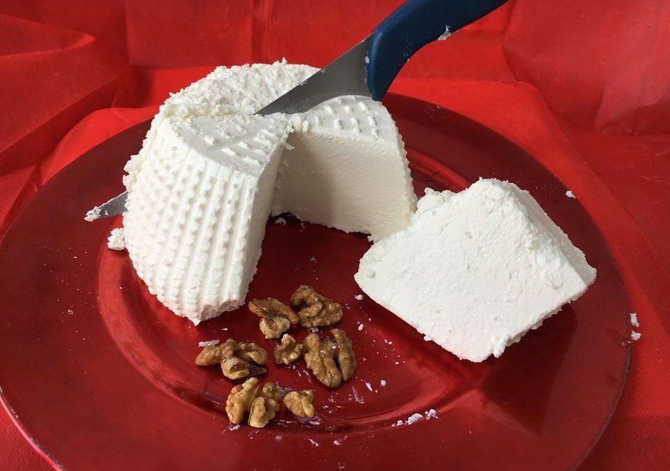 I prodotti lattiero-caseari e una dieta corretta, cosa c'è da sapere?