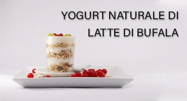 yogurt latte di bufala