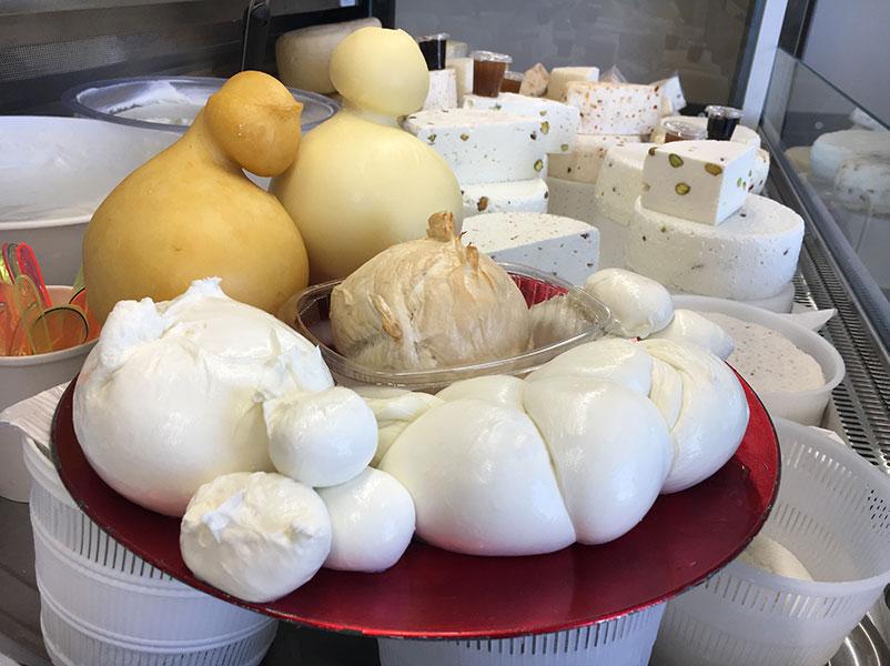 formaggi pasta filata, mozzarella, treccia, zizzona, caciocavallo